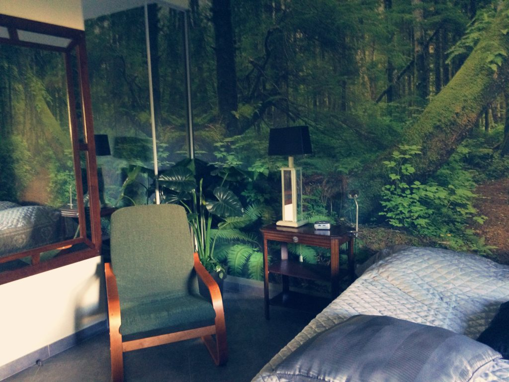 Chambre Forêt